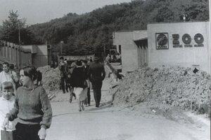 Zoo Košice mala byť pôvodne americkým konceptom v sovietskom prostredí. Prišla zmena režimu a idea Wildparku padla. Dnes má košická zoo 40 rokov.
