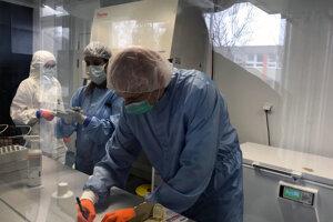 Pohľad do laboratória s tretím stupňom biologickej bezpečnosti vo Virologickom ústave Biomedicínskeho centra Slovenskej akadémie vied, kde sa virológom podarilo izolovať prvé slovenské kmene nového koronavírusu SARS-CoV-2.