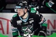 Jedným z prvých hráčov, ktorí predĺžili spoluprácu s HC Nové Zámky bol Patrik Rogoň