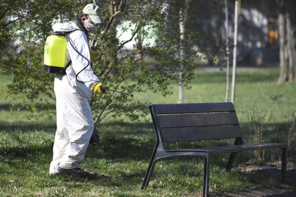 Na lavičku sa dá sadnúť hneď, ako postrek zaschne.
