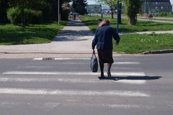 Zebry v Žiari sú vydraté. Mesto ich aktuálne obnovuje nástrekom.