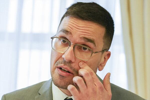 Generálny riaditeľ spoločnosti Slovak Investment Holding Ivan Lesay.