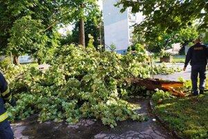 Hasiči odstraňovali popadané stromy aj v Košiciach.