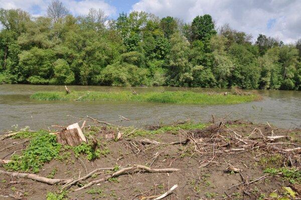 Po stromoch na brehu aj ostrove ostali len pne.