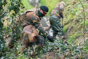 Vojaci prehľadávajú zalesnenú oblasť v Marke.