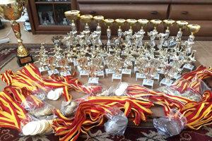 Roman Hromádka pripravil na nedeľňajší turnaj záplavu pohárov a cien pre deti.