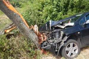 Za volantom  auta, ktoré narazilo do stromu, sedel hľadaný muž, ktorého v minulosti odsúdili za podvody s bytmi.