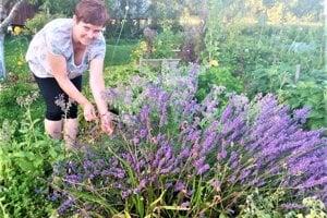 Jana Kaščáková je povolaním učiteľka, doma sa rada venuje záhrade a produkcii prírodnej kozmetiky.