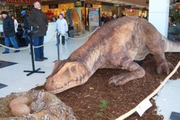 Allosaurus pri hniezde. Patrí k najväčším exponátom výstavy.