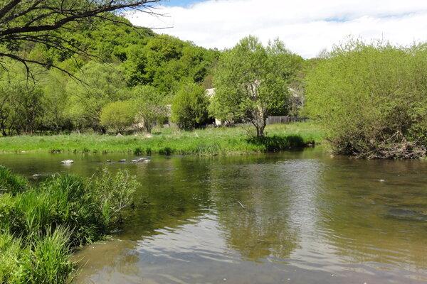 Rieka Slatina v úseku pri chotári Slatinky.
