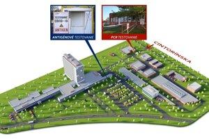 Mapka testovania, ktoré sa na ochorenie COVID-19 vykonáva v areáli nemocnice v Nových Zámkoch.