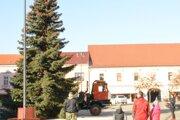 Tohtoročný stromček pochádza zo Slnečnej ulice.