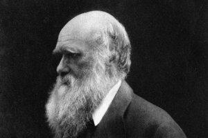 Charles Darwin. Portrét z roku 1868.