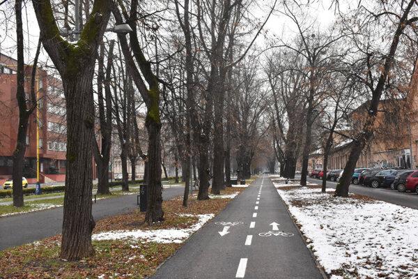 Park na Moyzesovej ulici v Košiciach.