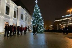 Vianočný stromček zo Slovenského raja v Prezidentskom paláci.