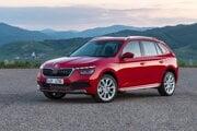 Skokanom minulého roka je Škoda Kamiq, ktorá sa ako nováčik dostala na 6. miesto.