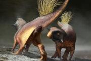 Digitálna rekonštrukcia Psittacosaura ilustruje, ako zviera využívalo kloaku na signalizáciu počas dvorenia.