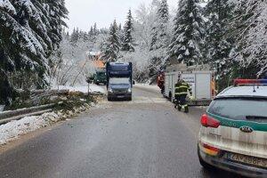 Cestu z Makova do Bytče zahatal spadnutý strom