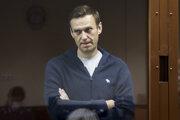 Ruský opozičný politik Alexej Navaľnyj na moskovskom súde.