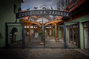 Bojnická zoo je zatvorená, davy návštevníkov tu už dlho nevideli.