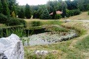 Z Levického okresu budeme môcť ísť na výlet napr. do Arboréta v Tesárskych Mlyňanoch v okrese Zlaté Moravce.
