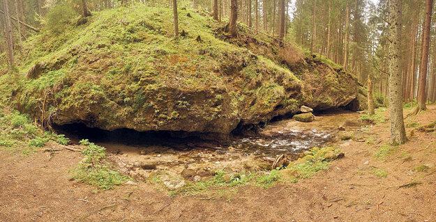 Brestovská vyvieračka v Západných Tatrách vyviera priamo z rovnomennej jaskyne  a patrí medzi najkrajšie a druhovo najbohatšie na Slovensku.