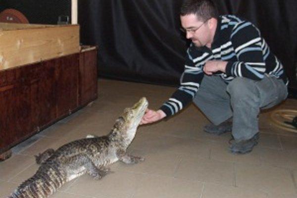 V nitrianskom viváriu majú aj krokodíla.