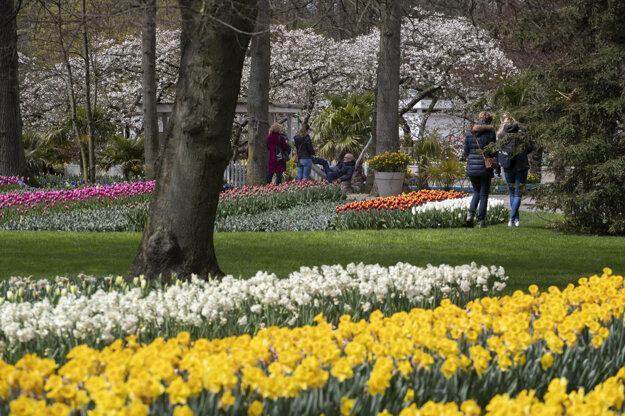 Najznámejšia tulipánová záhrada Keukenhof v Holandsku.