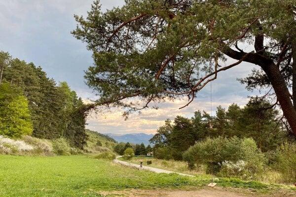 Stromová hojdačka v Trebostove.