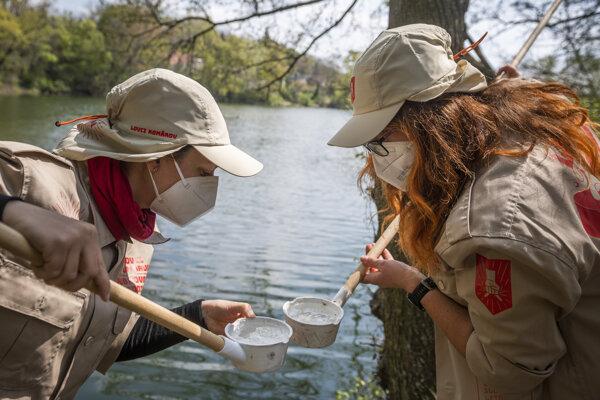 Dobrovoľníčky ako lovkyne komárov vykonávajú monitoring liahní komárov.