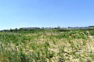 Súčasťou kompletného projektu KFA sú i tréningové ihriská v jej blízkosti. Tie sú zatiaľ v nedohľadne.