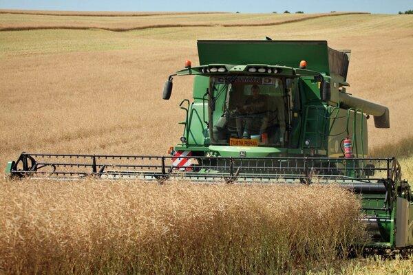 So žatvou začali aj poľnohospodári v Bátorových Kosihách.