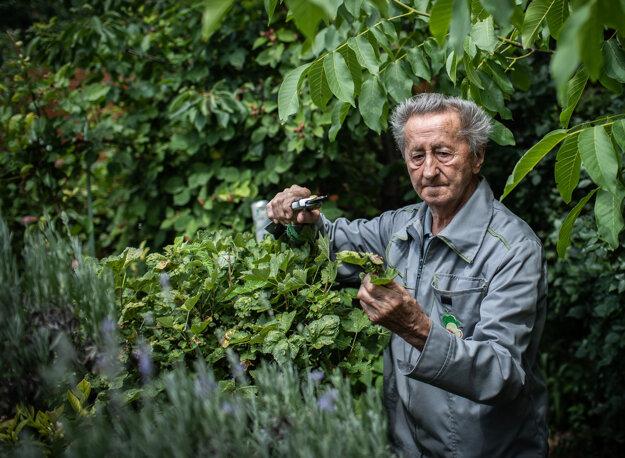 Profesor Ivan Hričovský vo svojej záhrade.
