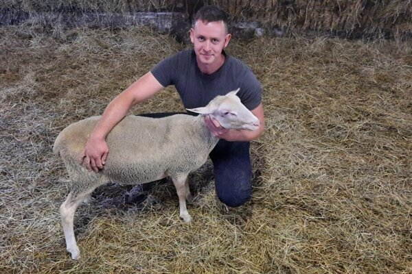 Marek Marko, pracujúci v RD Hron Slovenská Ľupča, je aktuálne najrýchlejším strihačom oviec na Slovensku.