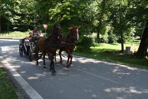 Objavte Poloniny - starostlivosť o kone.