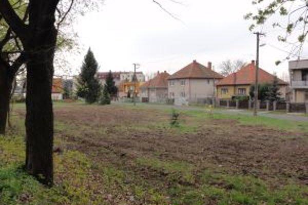 Na začiatku parku ktosi zoťal desiatky stromov. Páchateľovi hrozia dva roky basy.