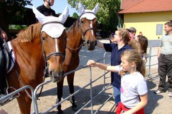 Žrebčín otvoril svoje stajne návštevníkom. Začal tým sezónu.