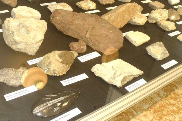 Hornonitrianske múzeum v Prievidzi sprístupnilo výstavu hornín.