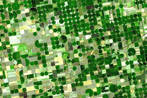 Orná pôda v kansaskom okrese Finney County. Na zelených plochách rastie cirok, kukurica alebo pšenica. Svetlo sfarbené plochy sú neobrobené ale nedávno zožaté.