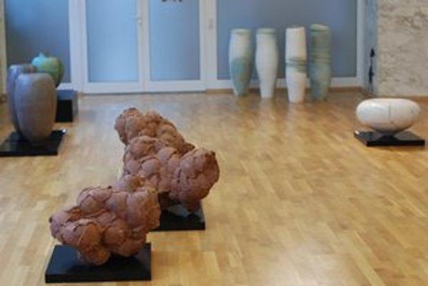 Výstava poľských sochárov Tomasza Niedzolku a Bozeny Sacharczukovej Štruktúra miesta / Štruktúra veci je Poľskom inštitúte v Bratislave 24. mája.