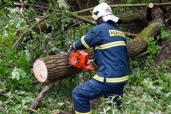 hasiči mali prácu najmä so stromami.