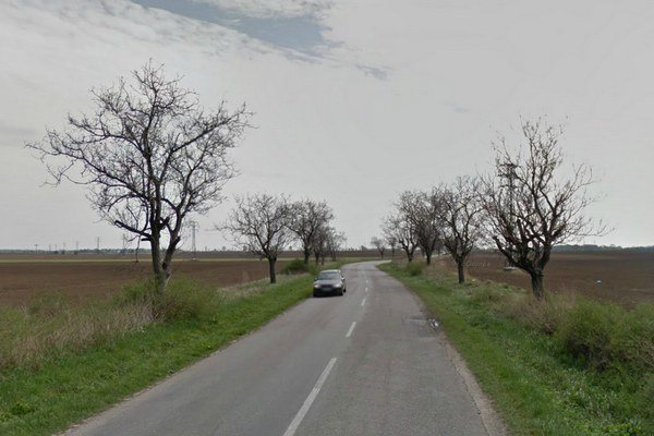 Cesta medzi Trnavou a Zelenčom.