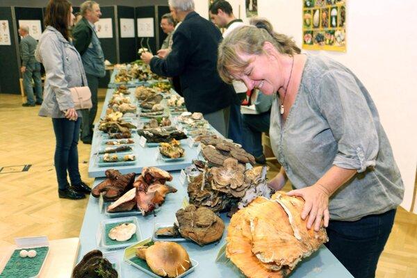 Mykologička Ivona Kautmanová sa teší z veľkej plodnice sírovca obyčajného, ktorú na výstavu priniesli hubári z Malinovej.