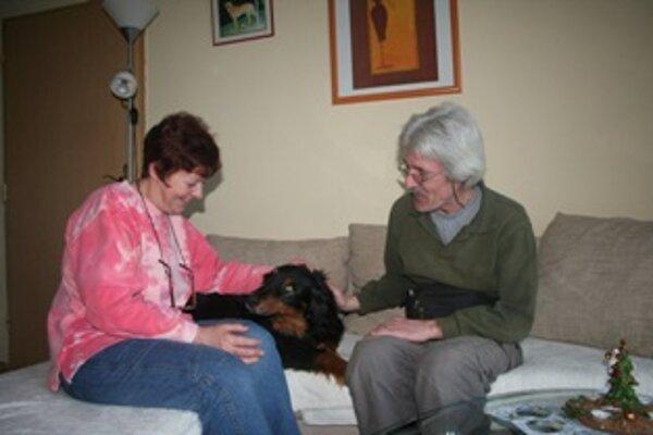 Trojročný psík sa v rakúskej rodine rýchlo udomácnil.
