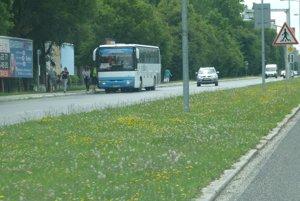 Zastávka prímestských a diaľkových autobusov; Sever, obch. dom