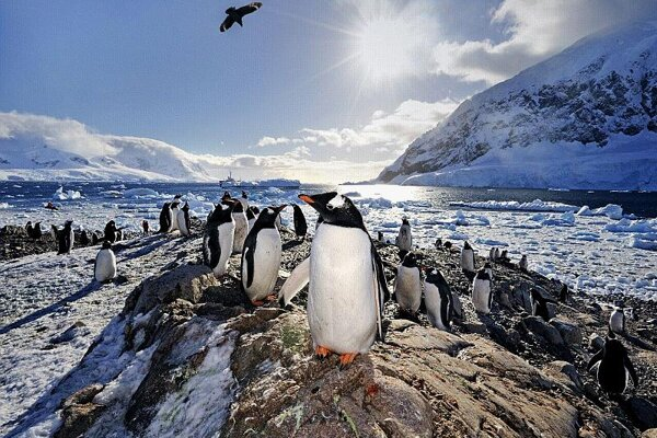 A picture-perfect view from Antarctica.