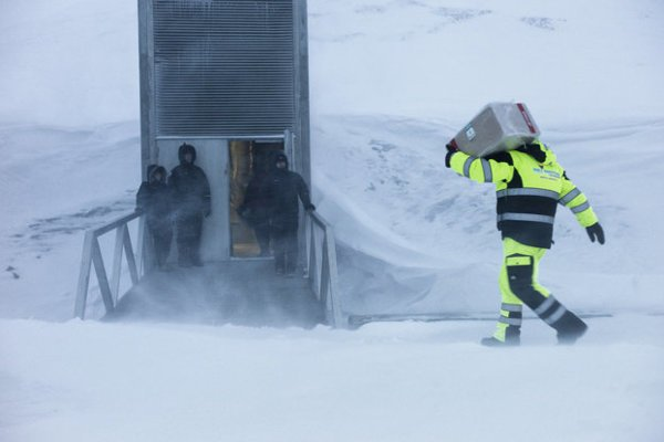 World Gene Bank in Spitsbergen, Norway