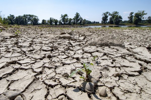 The banks of the low Danube river are seen in Mariaposching, southern Germany, Aug.1, 2018.