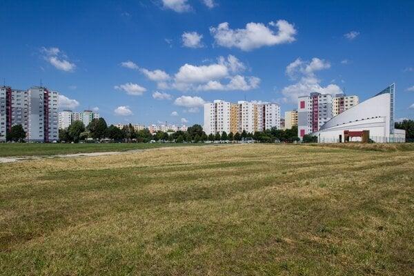 Grassland in Bratislava's borough of Petržalka