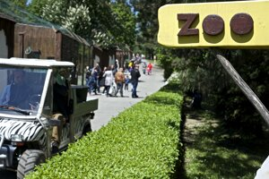 The Bratislava zoological garden will remain closed until a further notice.